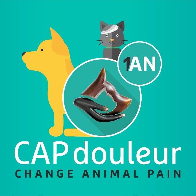 06 juin 2017 - CAPdouleur fête son 1er anniversaire !