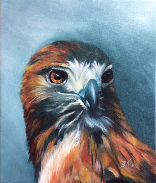 01417- The Red Tailed Messenger 10 x 12.jpg
