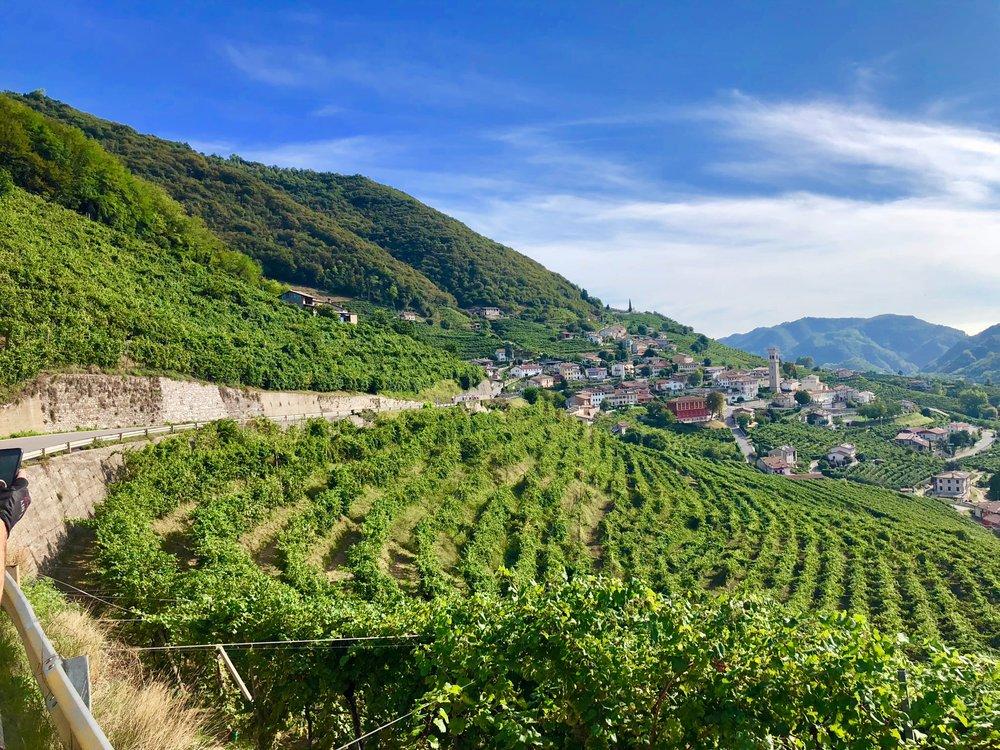 Procecco wine region - bassano del grappa