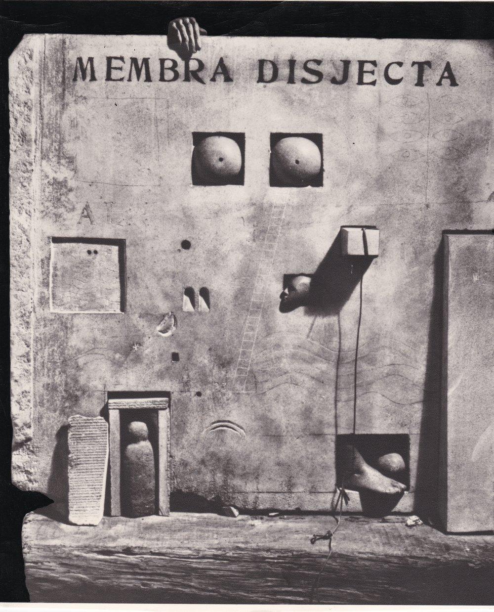 Membra Disjecta.jpg