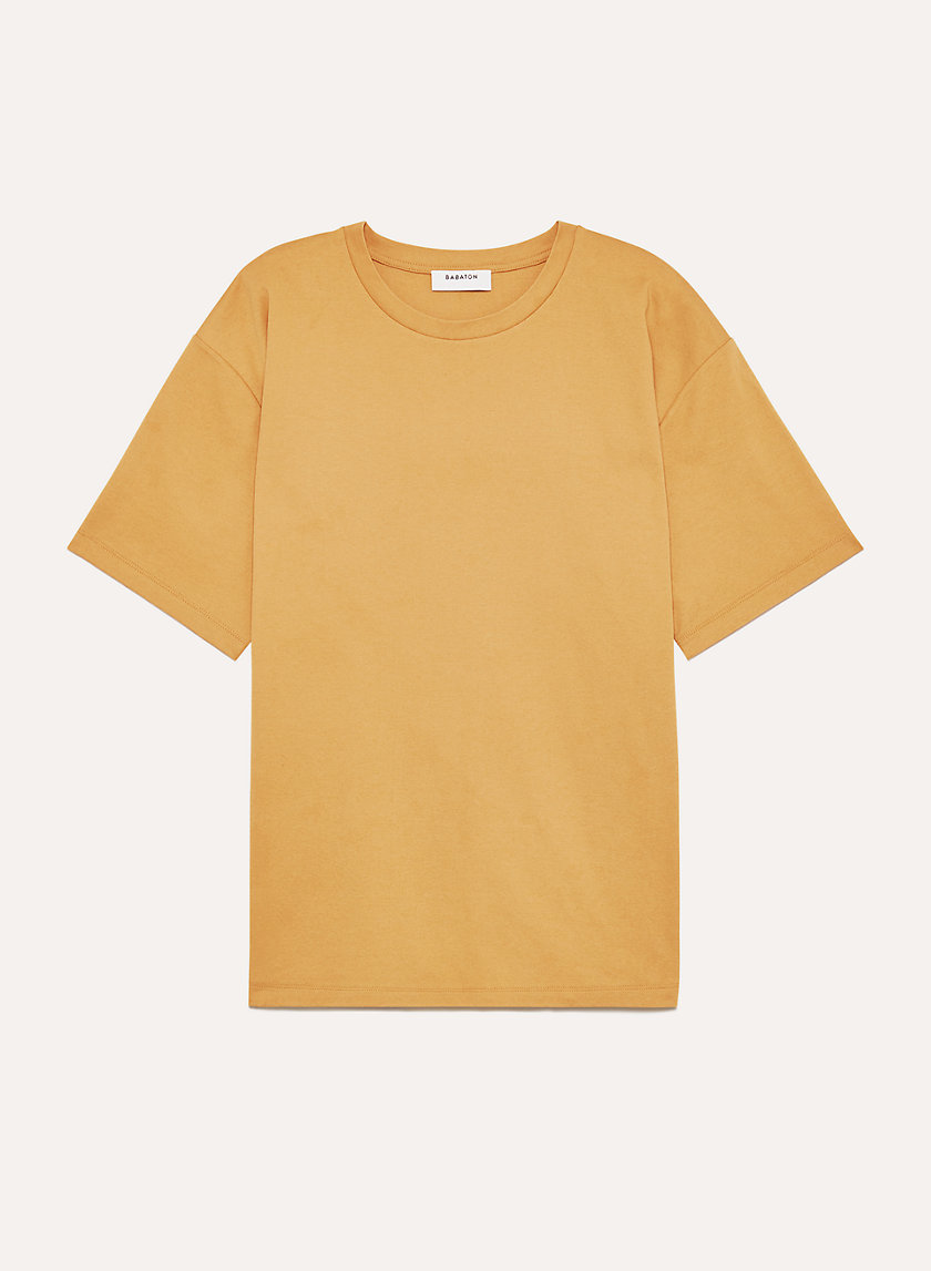 https://www.aritzia.com/en/product/evan-t-shirt/68622.html?dwvar_68622_color=14165