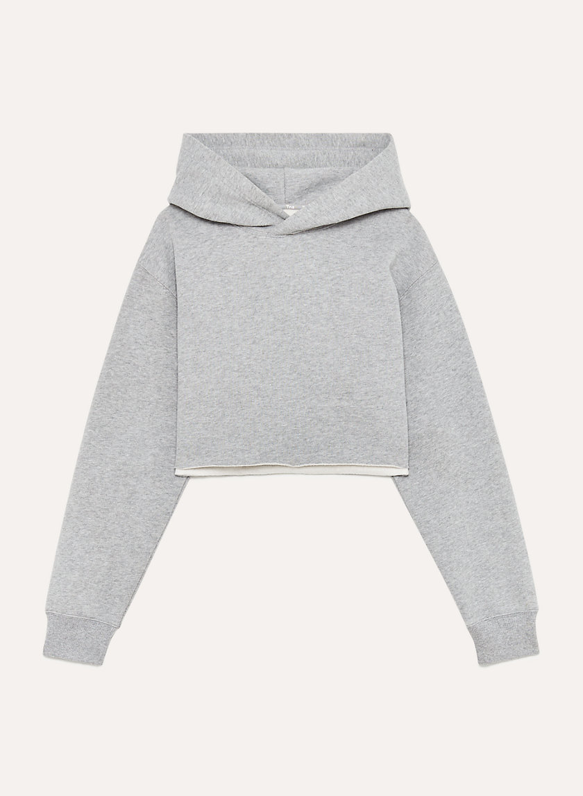 https://www.aritzia.com/en/product/perfect-hoodie---crop/64151.html?dwvar_64151_color=13234