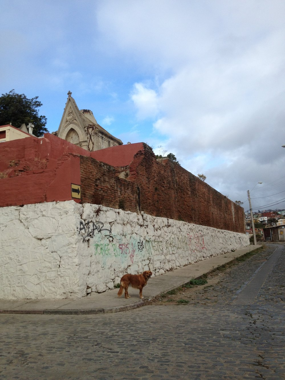 El Perrito. Valparaíso, Chile.