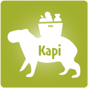 KAPI.png