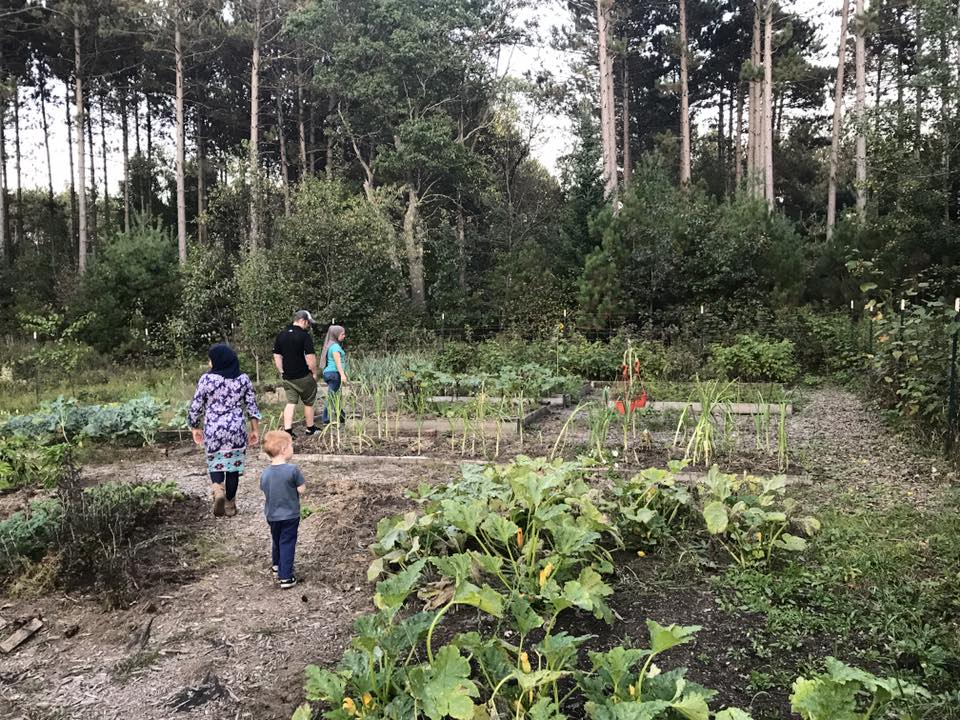 Our Practice - We use organic growing practices, permaculture methods and green manure to repair soil health.   To learn more, follow the link below.