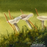 Into-the-Woods-cprt.jpg