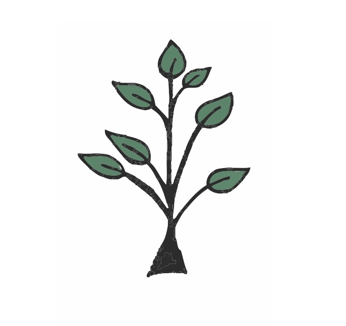 Tree Colorized 2.jpg