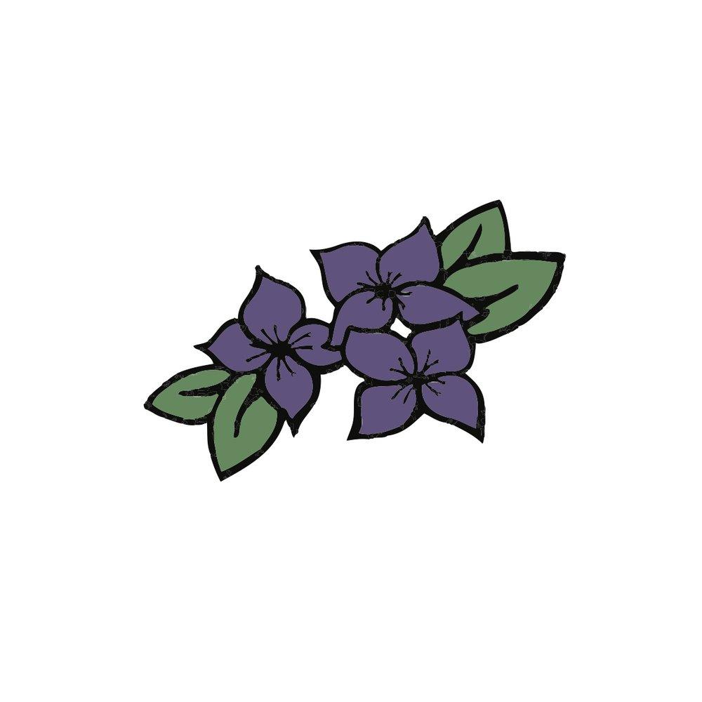 Flowers Colorized 2.jpg