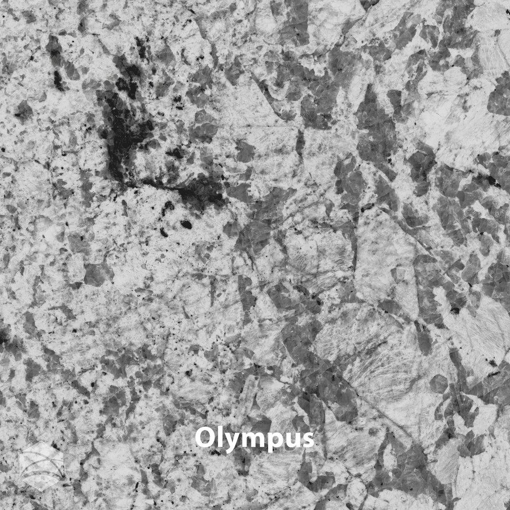 Olympus_V2_14x14.jpg