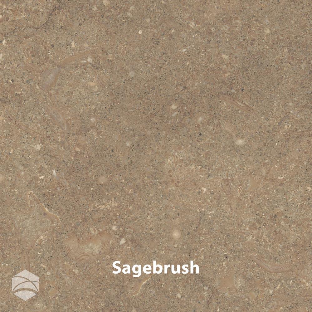 Sagebrush_V2_14x14.jpg