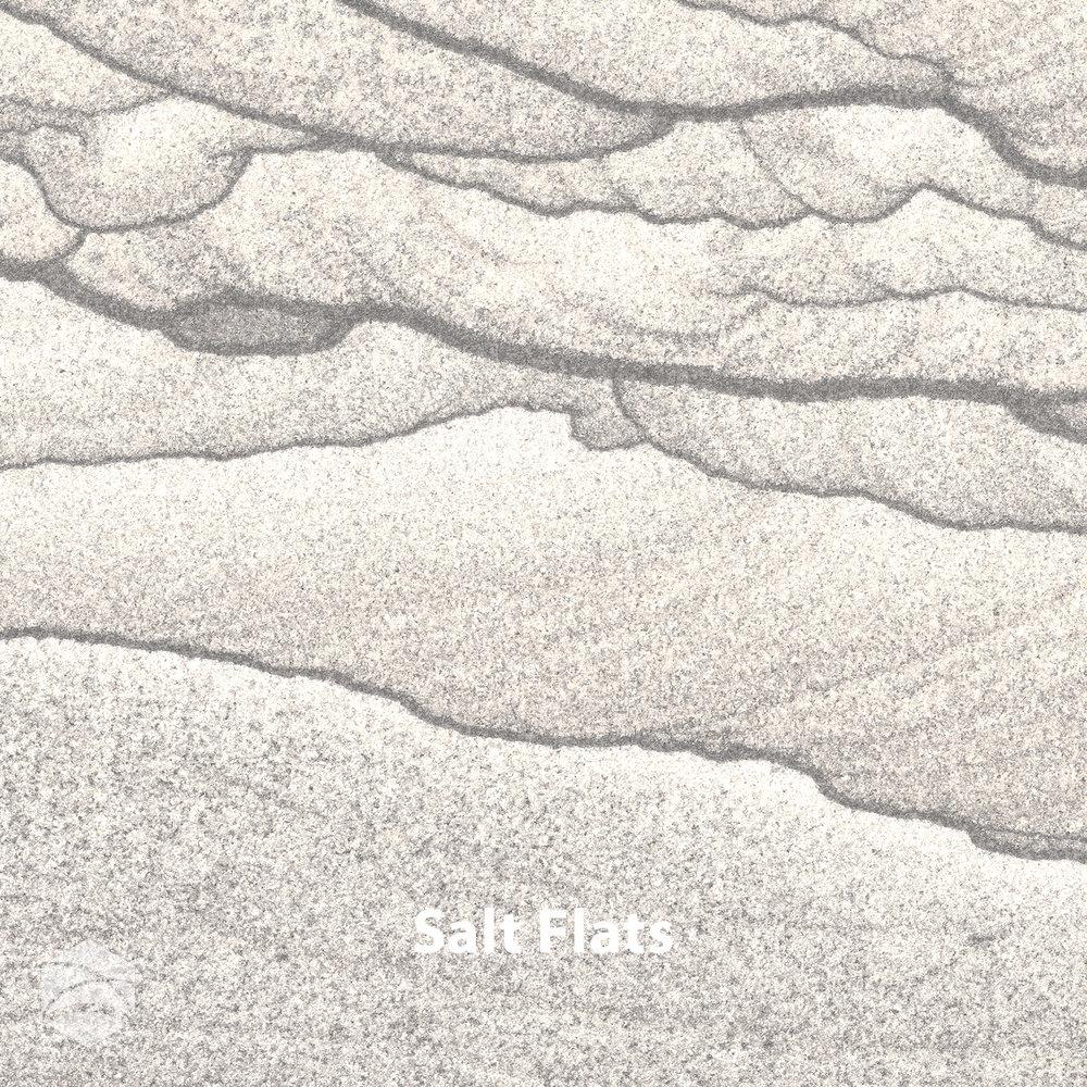 Salt Flats_V2_14x14.jpg