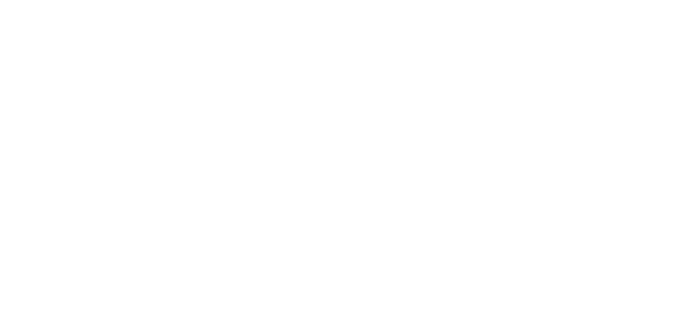 NorthFaceWhite.png