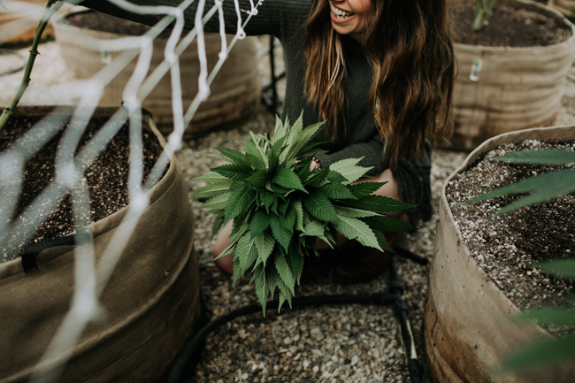 JENNIFER-SKOG-cannabis-farm-lifestyle_0114.jpg