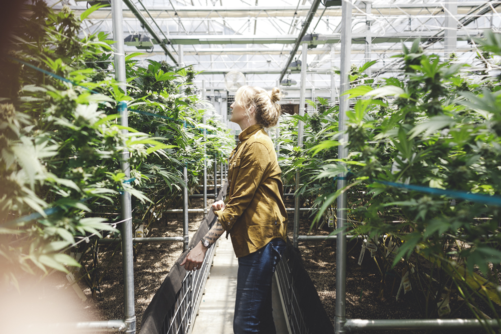 JENNIFER-SKOG-MJ-Lifestyle-cannabis-honey-pot_0424.jpg