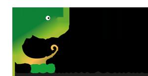 Chameledec_Logo.png