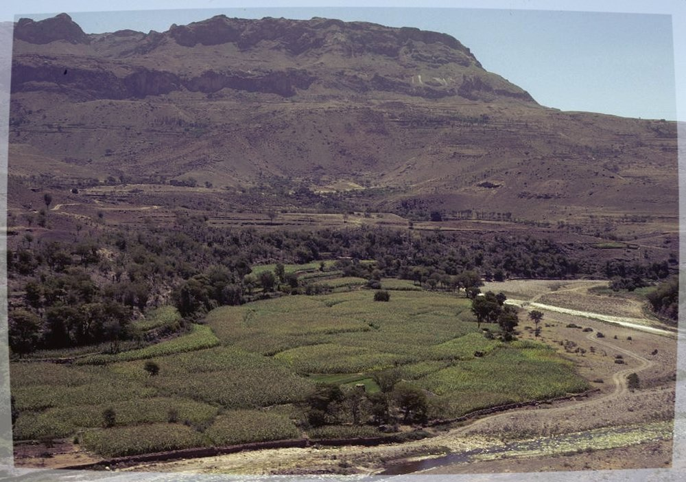 Wadi Bana