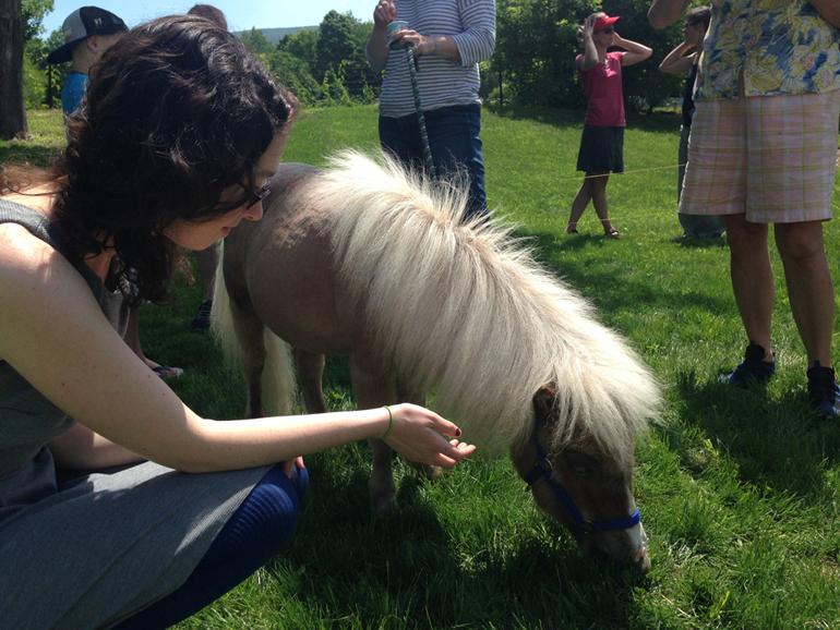 Krista-pony-small.jpg
