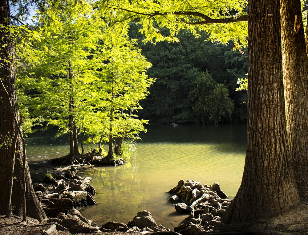Cox_J_LandscapeFinal_color.JPG