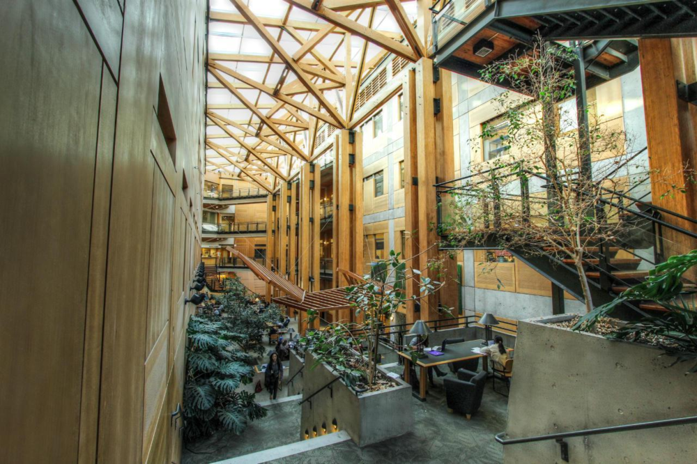 Canada's largest forestry school and a leader in education and research for the conservation and sustainable management of forests, forest products and natural resource systems.