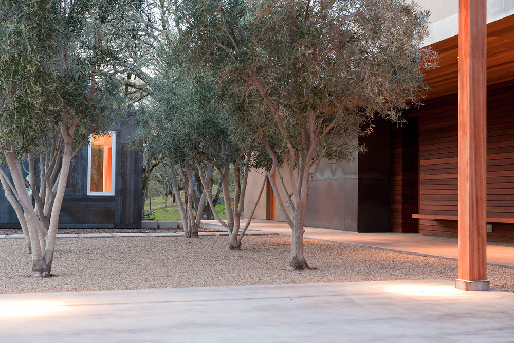 Simpson-Office-and-Olive-Trees.jpg