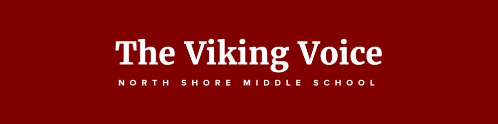 NSMS Viking Voice