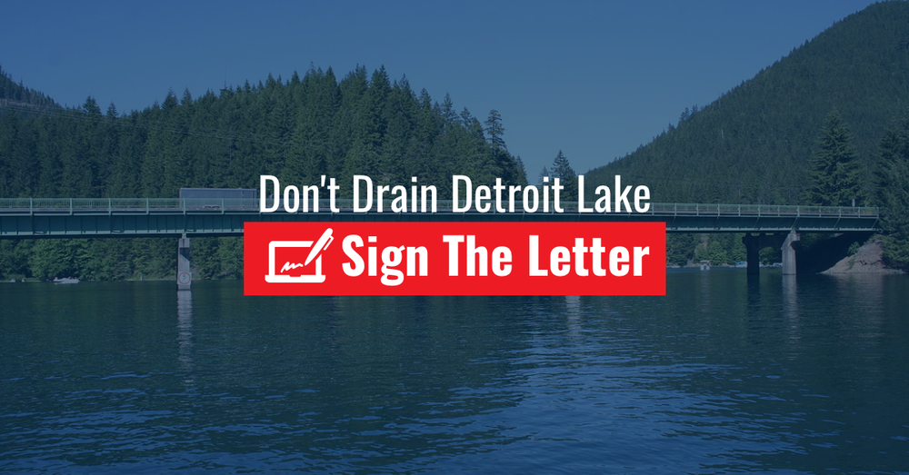 sign-the-letter.png