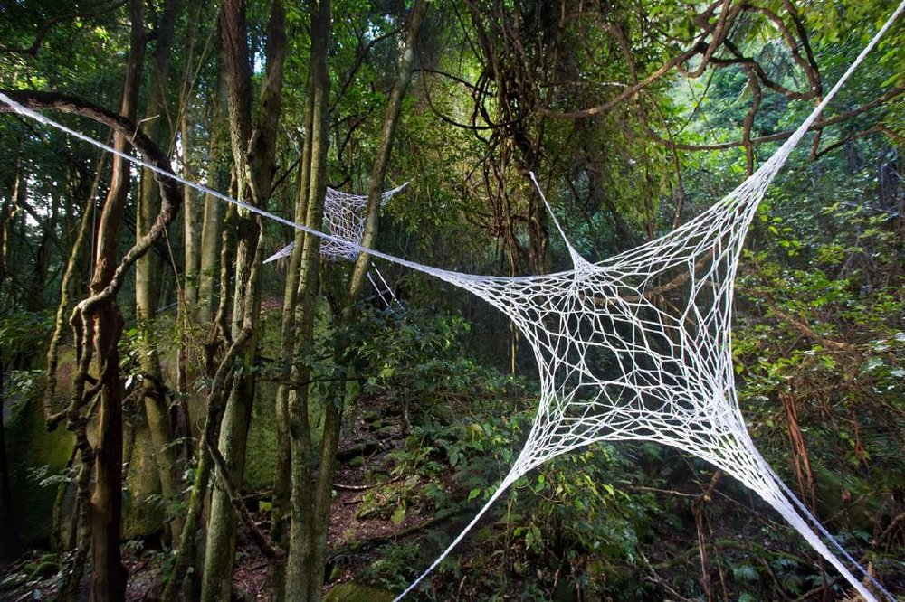 3D Webs by Louisa Magrics. Photo: Keith Maxwell