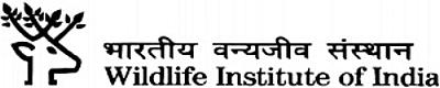 WII Logo.jpg