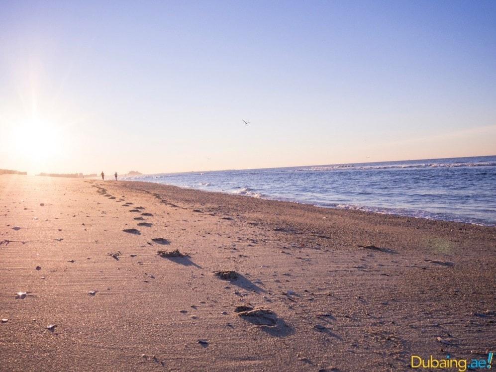 beaches6.jpg
