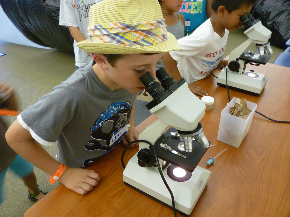 A kiddo in a fedora looking into a microscope