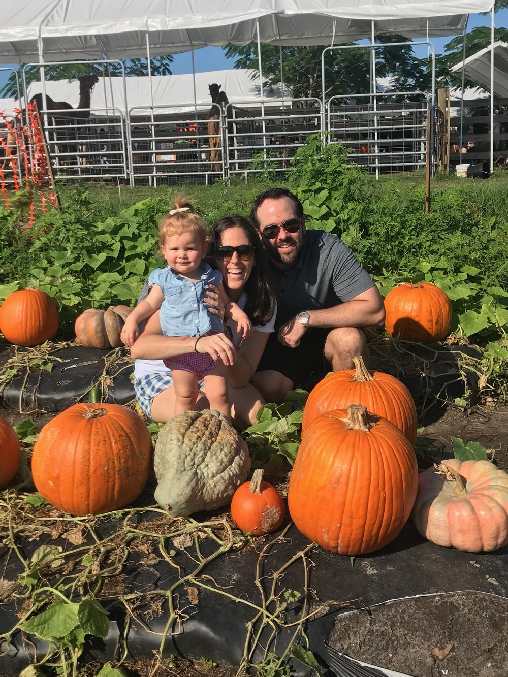 Lauren, Mike and Avery at the pumpkin patch
