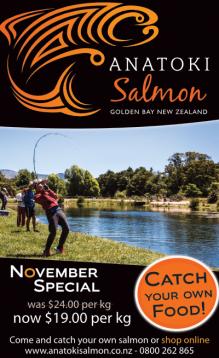 ResizedImage219358-blog-2017-November-special-110x180-Anatoki-salmon.png