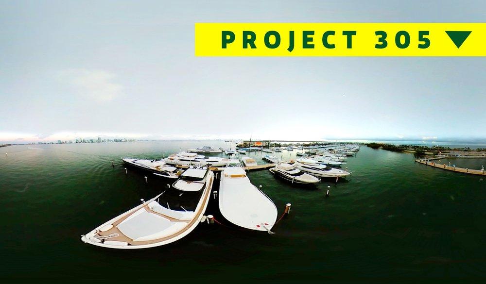 project305.jpg