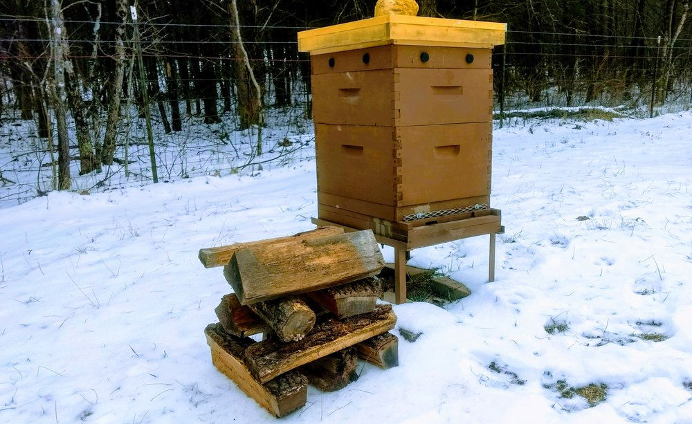 36 lbs of firewood—about the same amount of energy a honey bee colony uses each winter