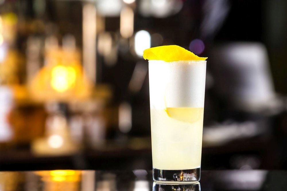 Gin Fizz (2).jpg