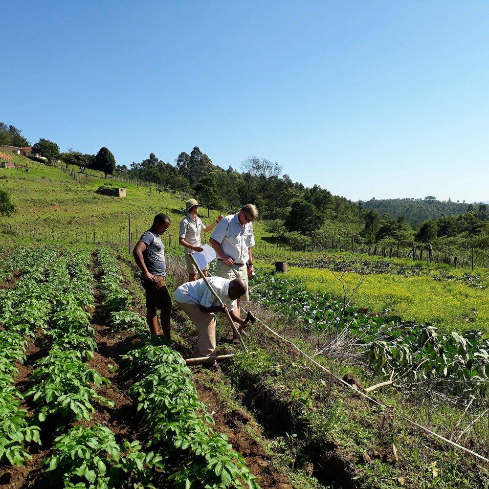harry-gwala-irrigation