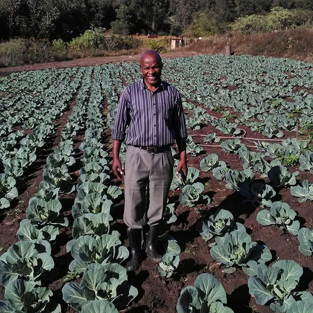 The backbone of this initiative is the relationships that have been and will be forged between aspiring farmers (both existing and prospective), commercial farmers with the willingness to impart their expertise, and collaborative relationships with the private sector who understand the critical role innovative solutions to agricultural land reform can play in this country.  An example of this is the relationship between Mr. Cyril Hlengwa and his mentor since October 2017, Mr. Andrew Pooler. From the private sector, Sutherland Seedlings, Omnia and Farmers Agri-care offered support to the project in its early stages.  #omnia #sutherlandseedlings #farmersagricare #higflatsixopofarmersassociation