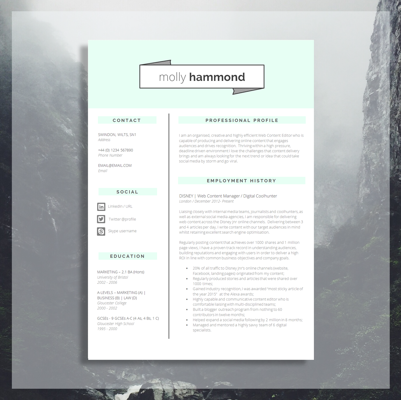 Creative Cv Template Creative Resume Application Advice Ms Word Resume Design Cv Design Instant Download Fitzrovia The Career
