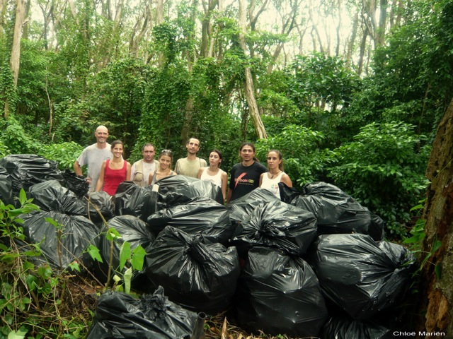 647 - Metric Tons of Waste Removed