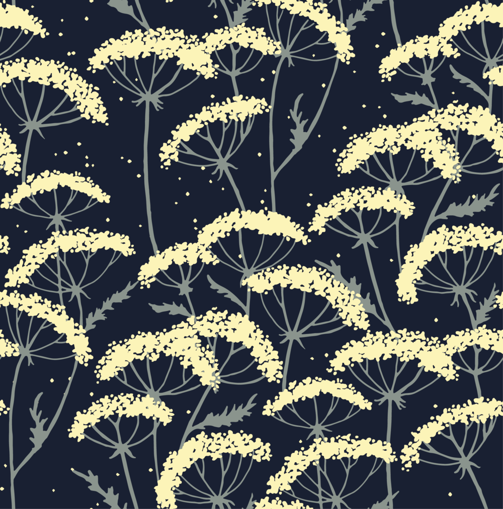Cow Parsley Night