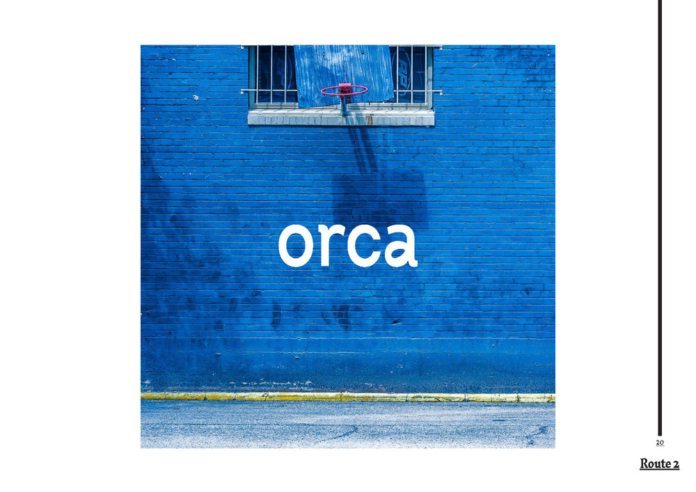 1.Orca_Presentation01_SarahMcDonnell2018_Page_20.jpg