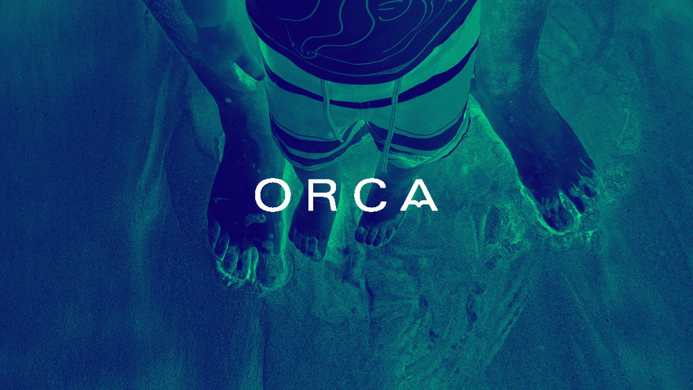 Orca_Guidelines_Page_5.jpg