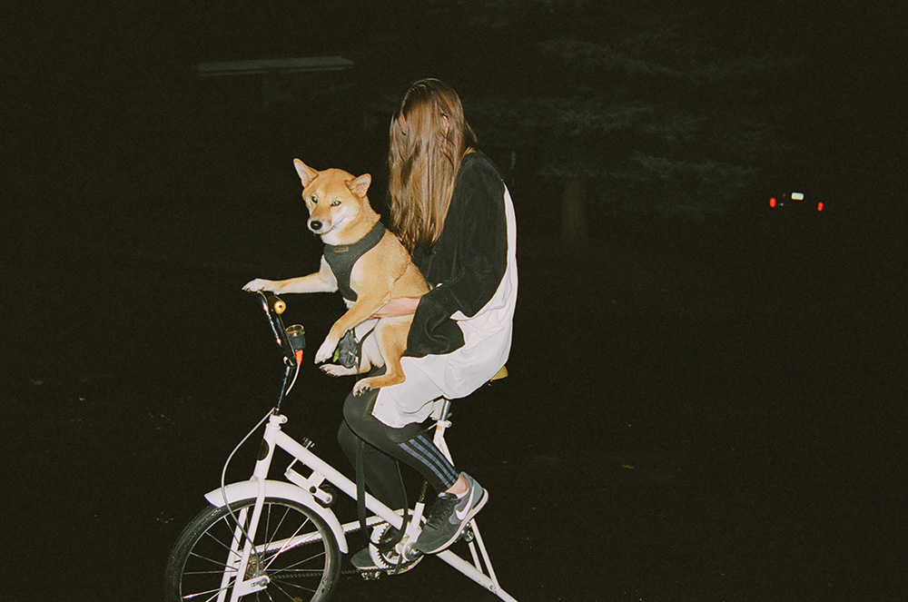 BicycleDog.jpg