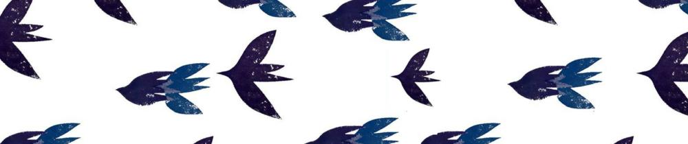 FBTN birds banner.png
