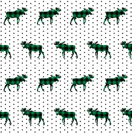 Buffalo Moose