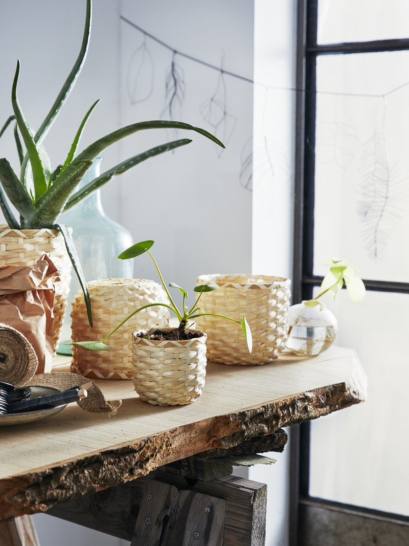 KAFFEBÖNA Plant Pots by IKEA, $7.99 each.jpg