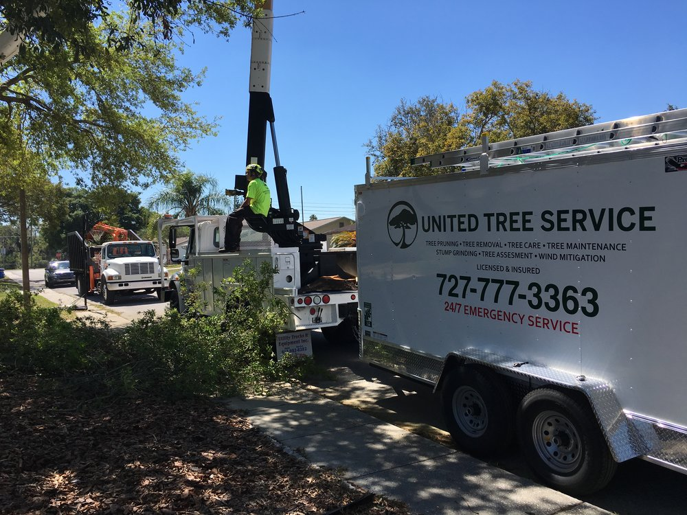 Commercial and residential tree services for the Hudson, Hillsborough, and Pinellas county areas.