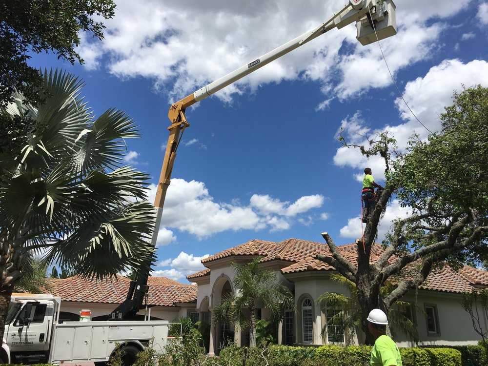Our team is on time and trained to get the job done in Hudson, Pinellas county, and Hillsborough county.