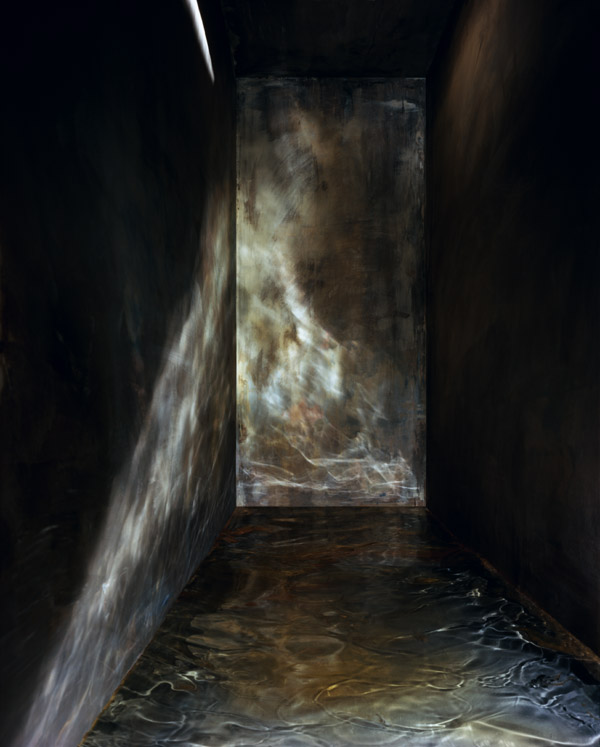 Flooded Cell #1 , 2008