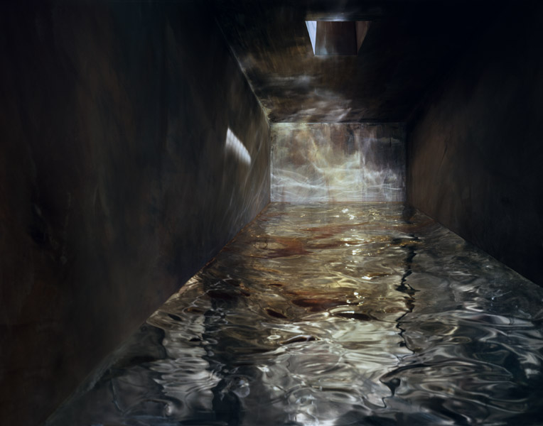 Flooded Cell #2 , 2008